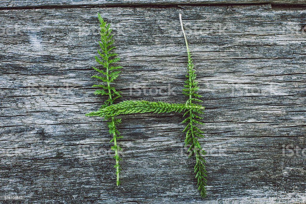 Letterh H from leaves on  wooden surface, the English alphabet stock photo