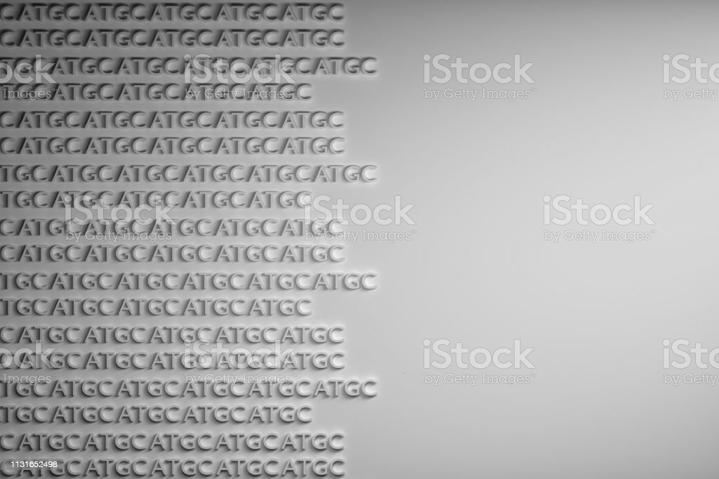 A T G C letters DNA stock photo