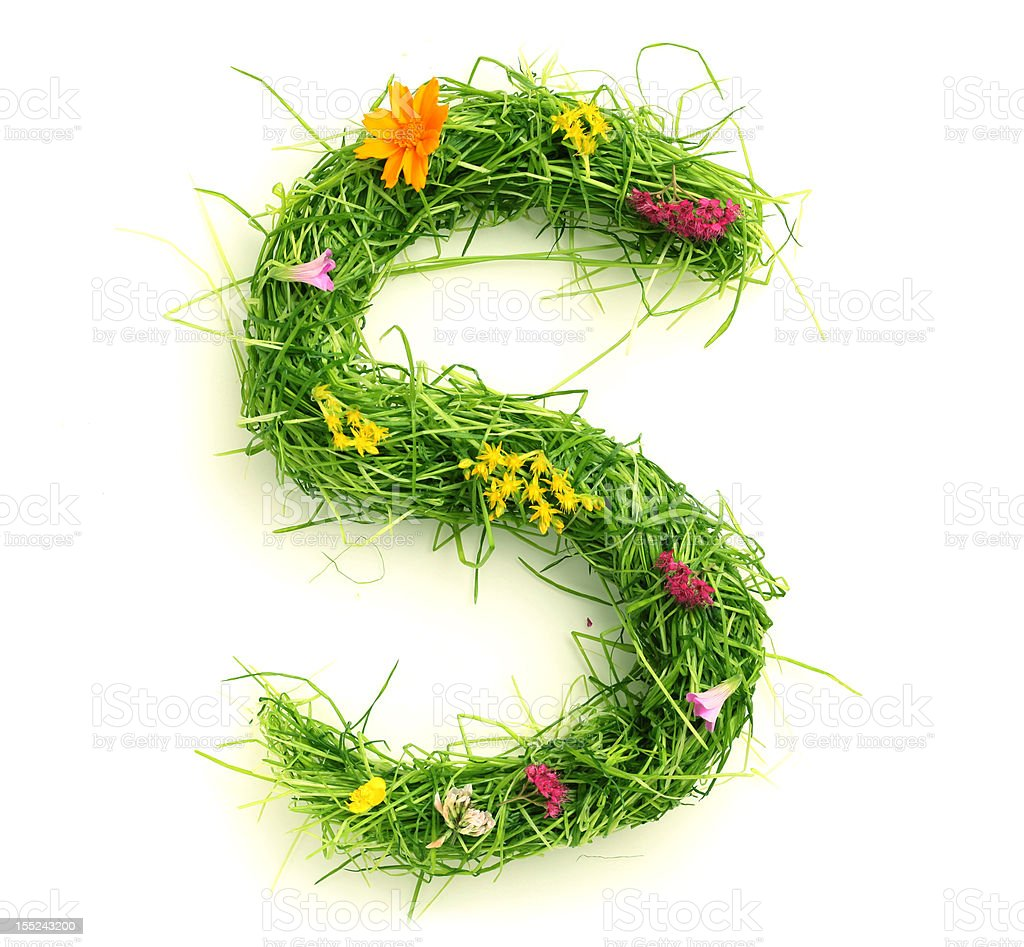 Letters made of flowers and grass royalty-free stock photo