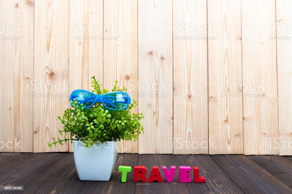TRAVEL letters text and notebook paper, little decoration tree in white vase on wooden background, travel vacation concept. zbiór zdjęć royalty-free