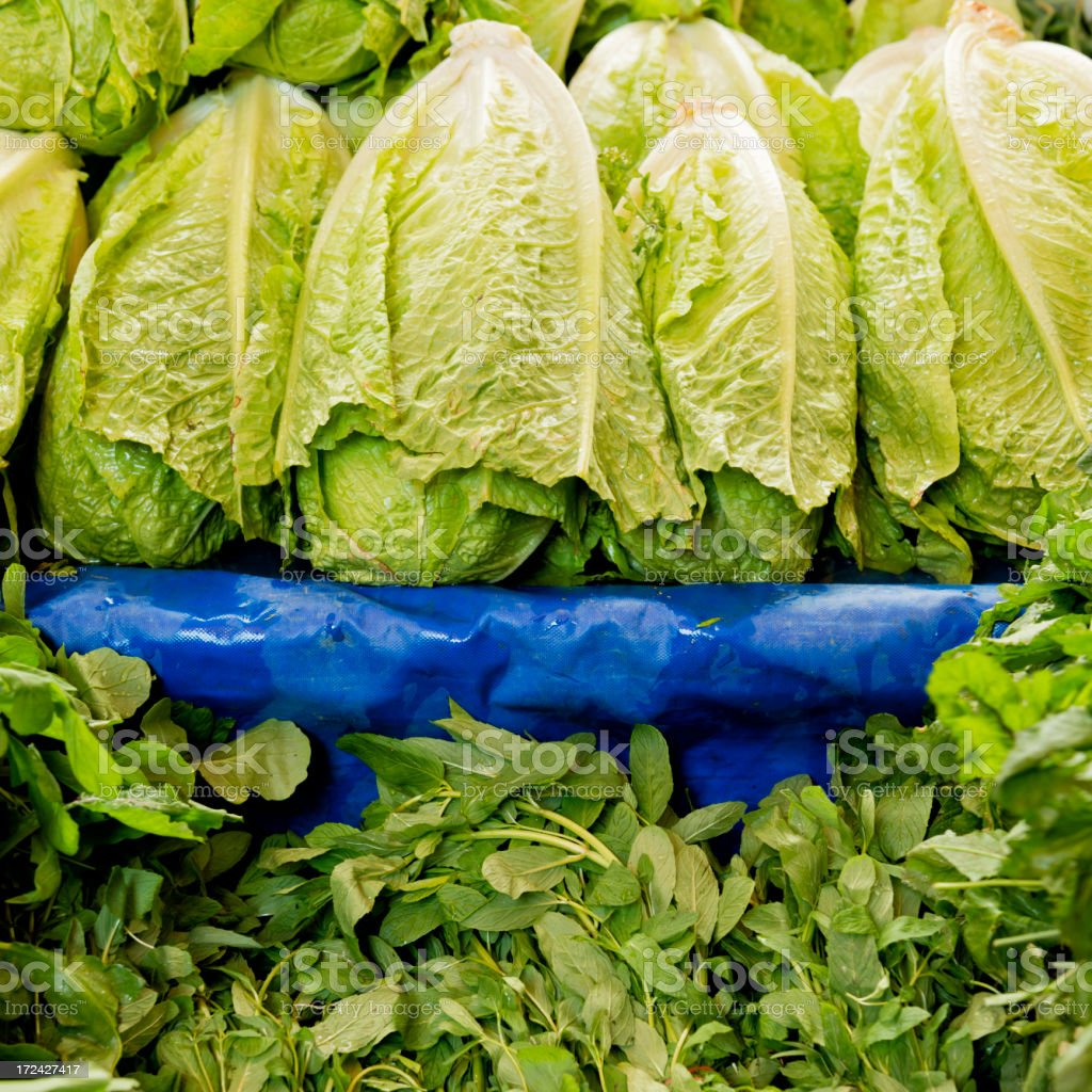 Lettuce and mint at farmer's market royalty-free stock photo