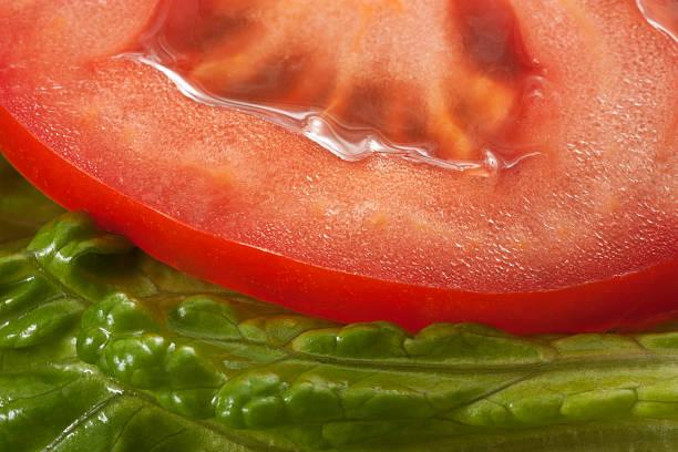 Lettuce and Tomato stock photo