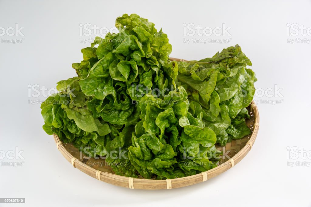 lettuce in a bamboo basket stock photo