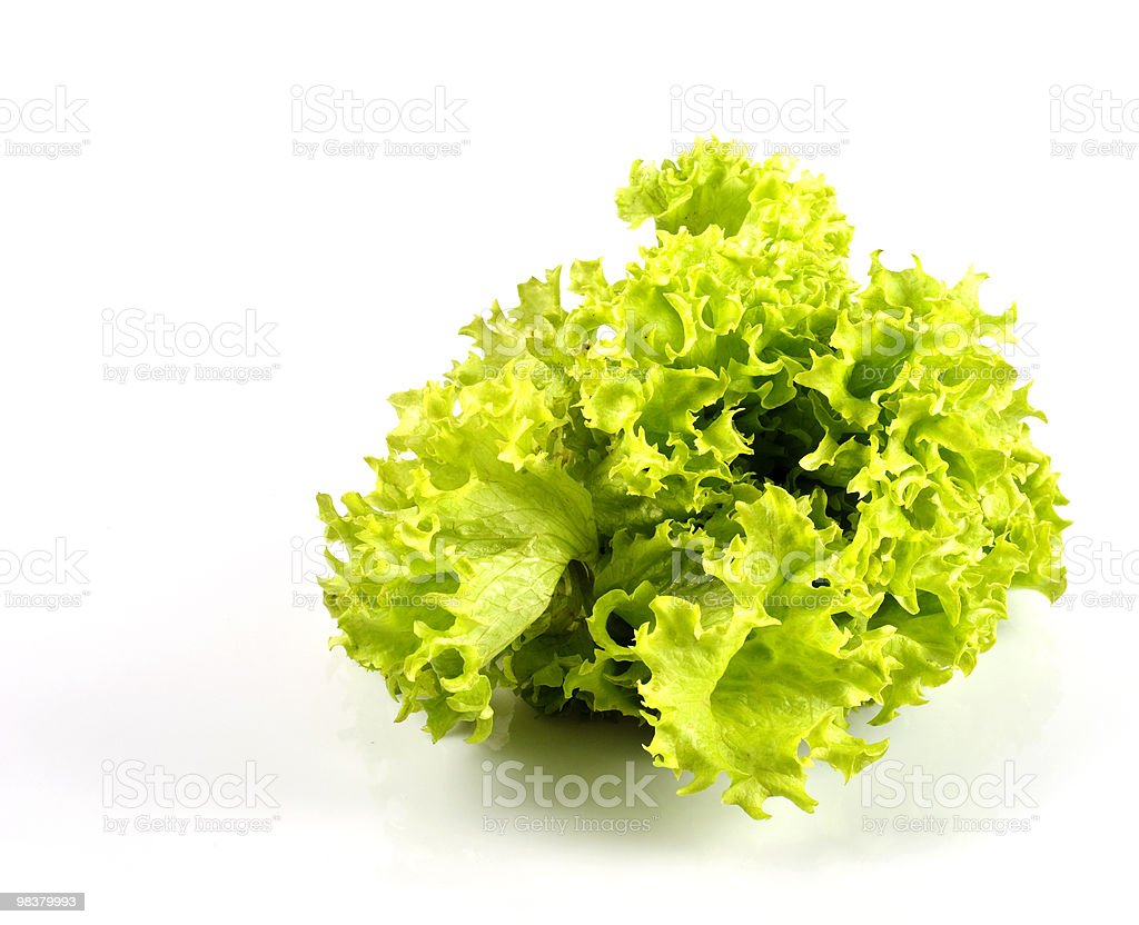 Lettuce in kitchen royalty-free stock photo