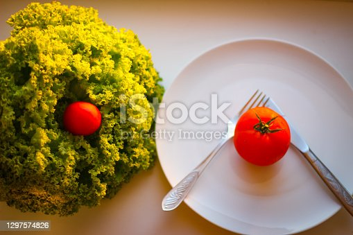 Lettuce leaves and tomatoes illuminated by sunlight. In the frame also has a white plate, a knife and a fork