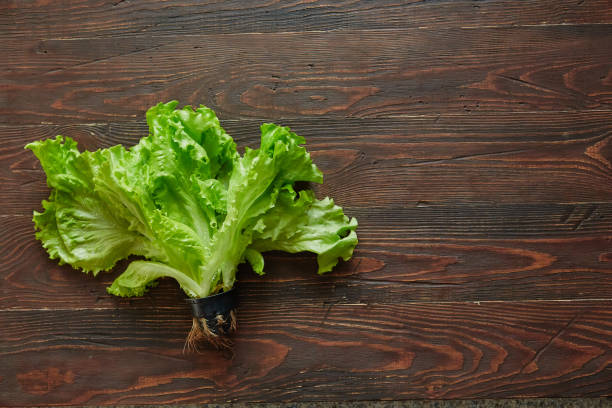 Lettuce leaves in a pot, on a wooden texture background stock photo