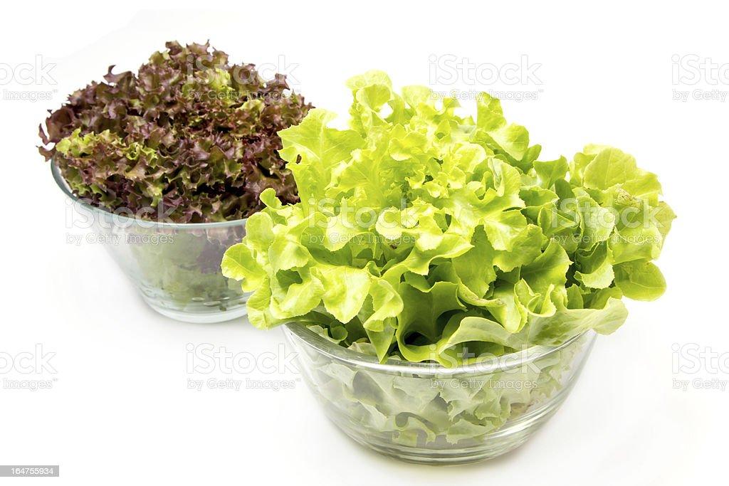 lettuce leaves royalty-free stock photo