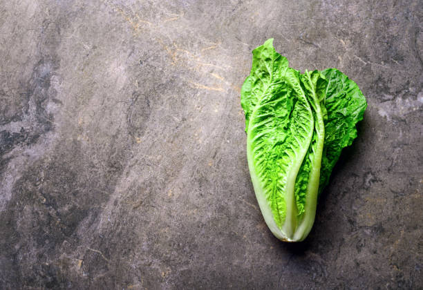 Lettuce on a kitchen stone table Lettuce on a kitchen stone table, view from above, space for a text romaine lettuce stock pictures, royalty-free photos & images