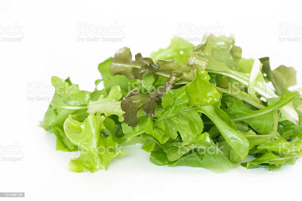 lettuce royalty-free stock photo