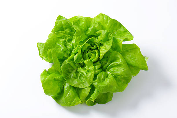 lettuce - lettuce stock pictures, royalty-free photos & images