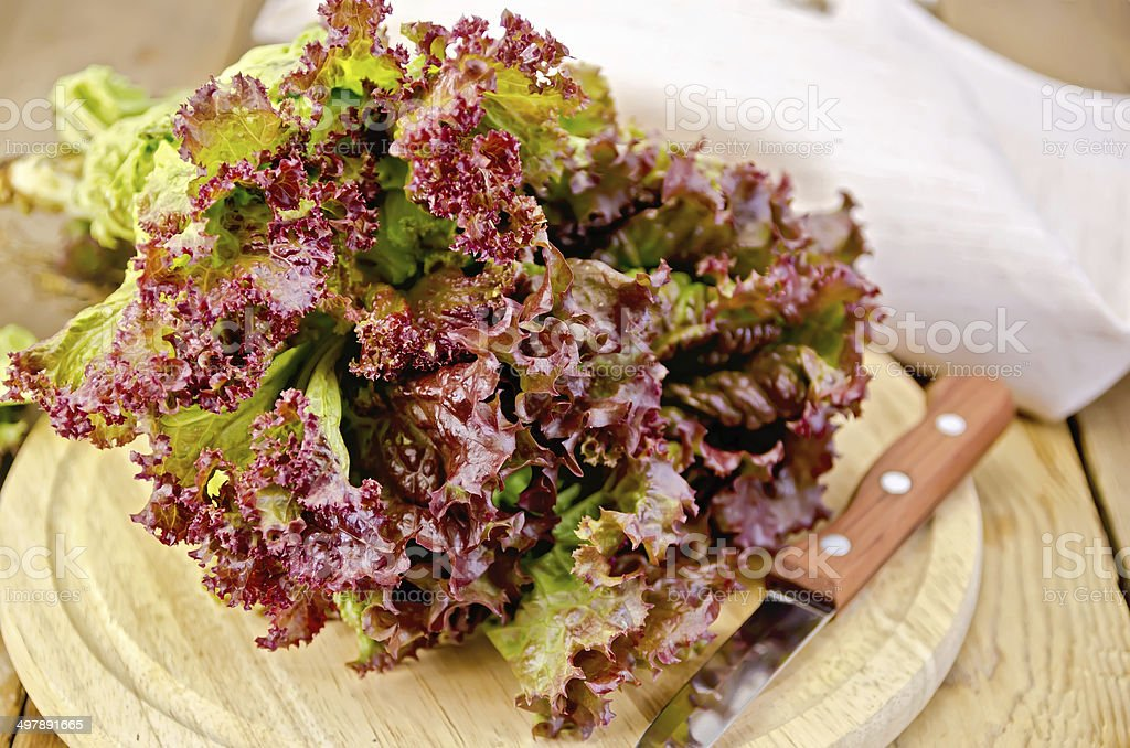 Lettuce red with a knife on board royalty-free stock photo