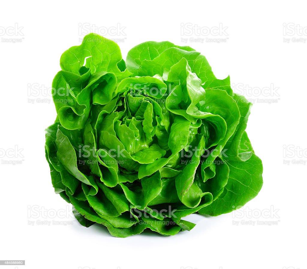 Salade de laitue isolé sur blanc - Photo