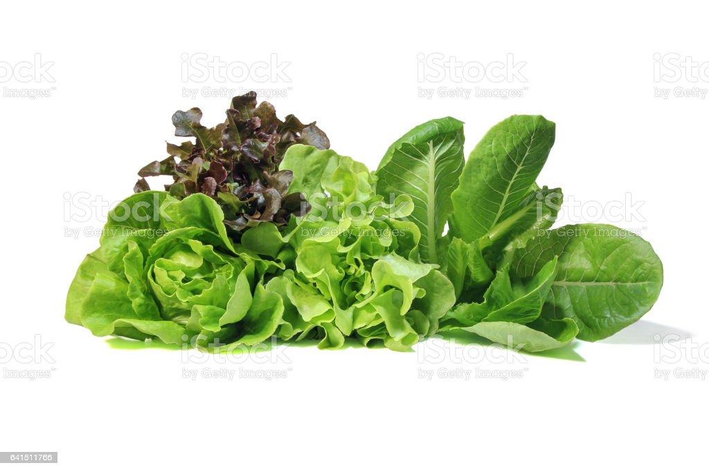Lettuce salad on white background. stock photo
