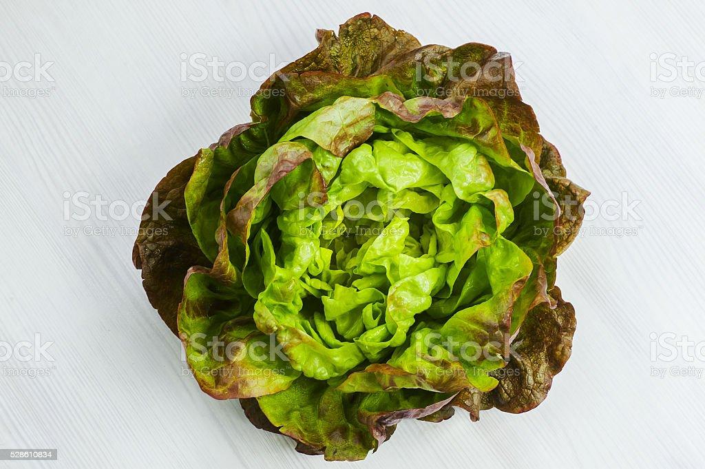 Salade de laitue - Photo