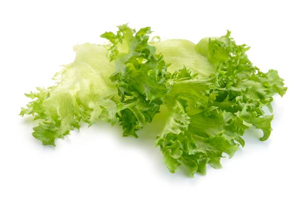Lettuce salad - Photo