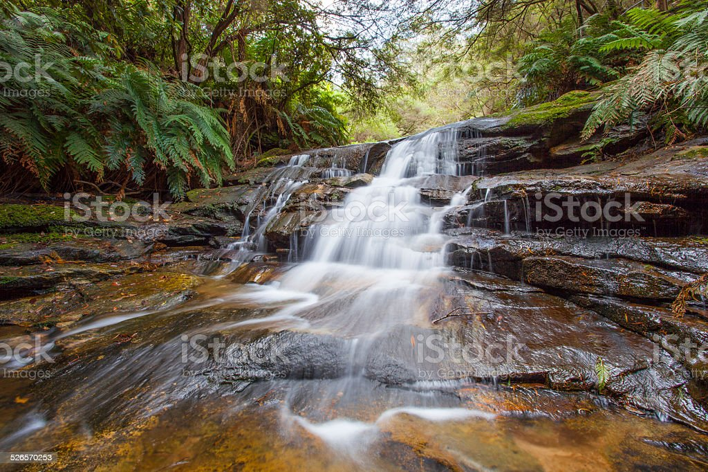 Leura Cascades stock photo