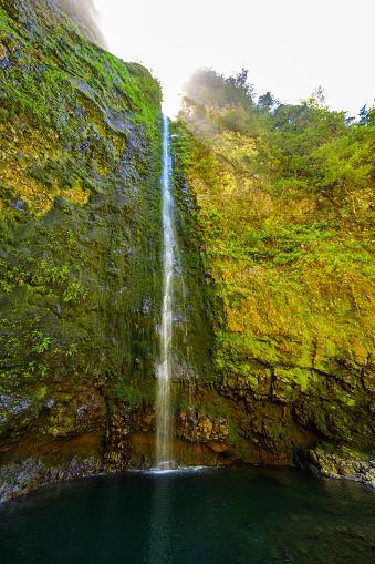 Levada do Caldeirão - hiking path in the forest in Levada do Caldeirao Verde Trail - tropical scenery on Madeira island, Portugal.