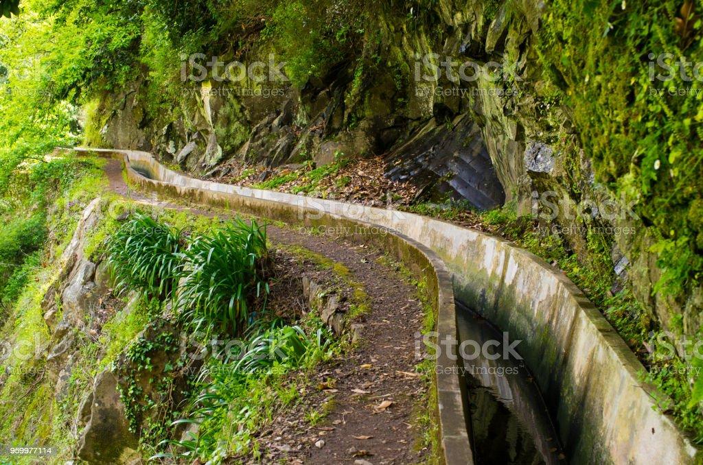 Levada do Norte, Madeira island - Portugal stock photo