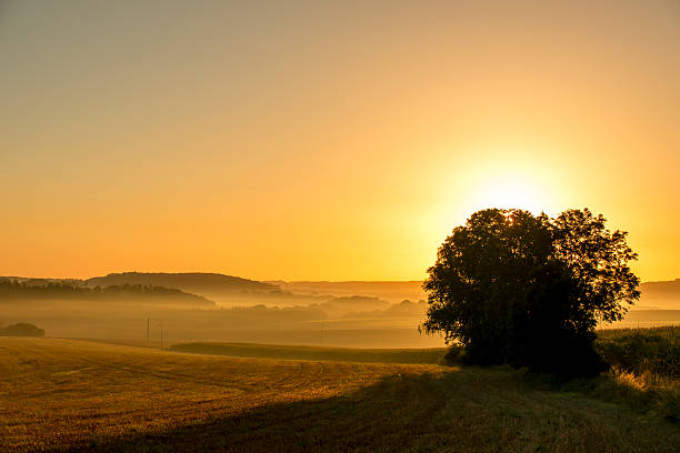 Hebel du soleil – Foto