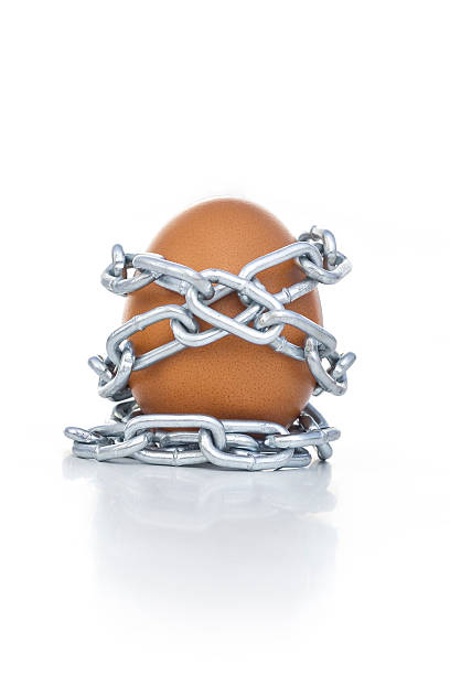 Liberation An egg is tied up with chains. deregulation stock pictures, royalty-free photos & images