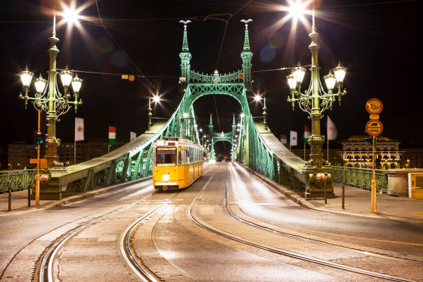 Liberty bridge at night, Budapest Liberty bridge at night, Budapest, Hungary. liberty bridge budapest stock pictures, royalty-free photos & images