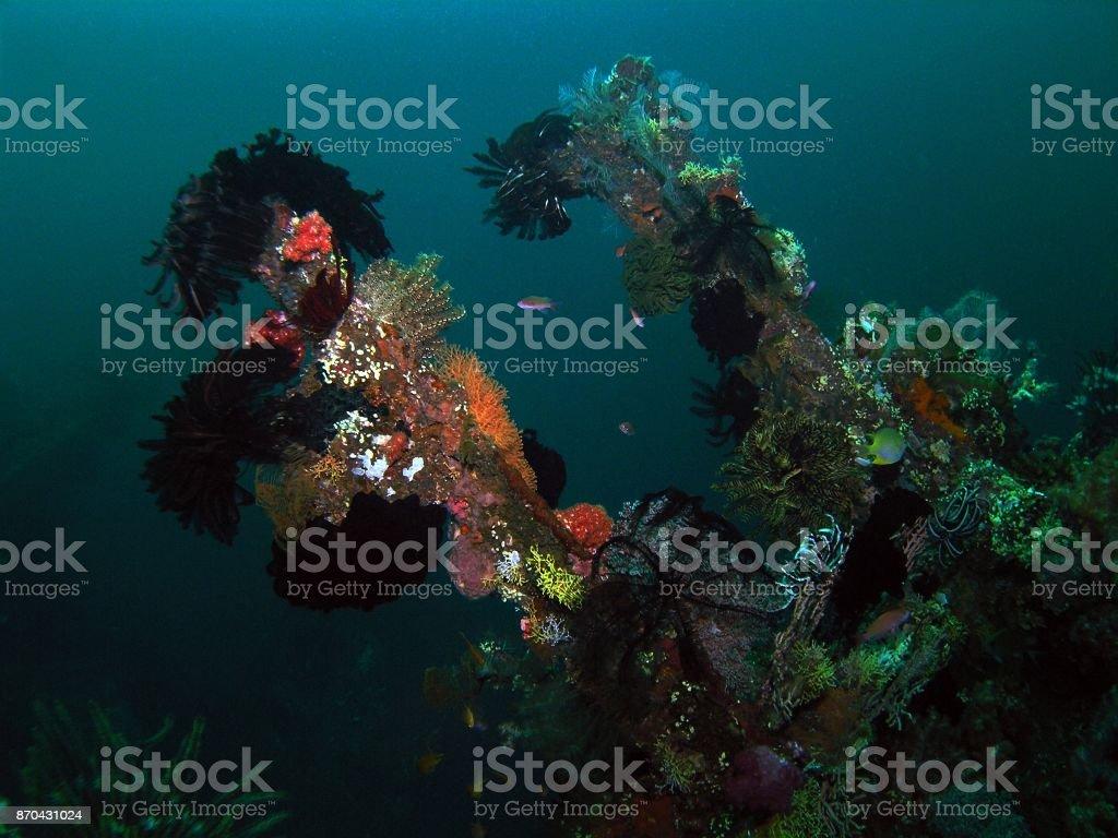 USS Liberty shipwreck stock photo