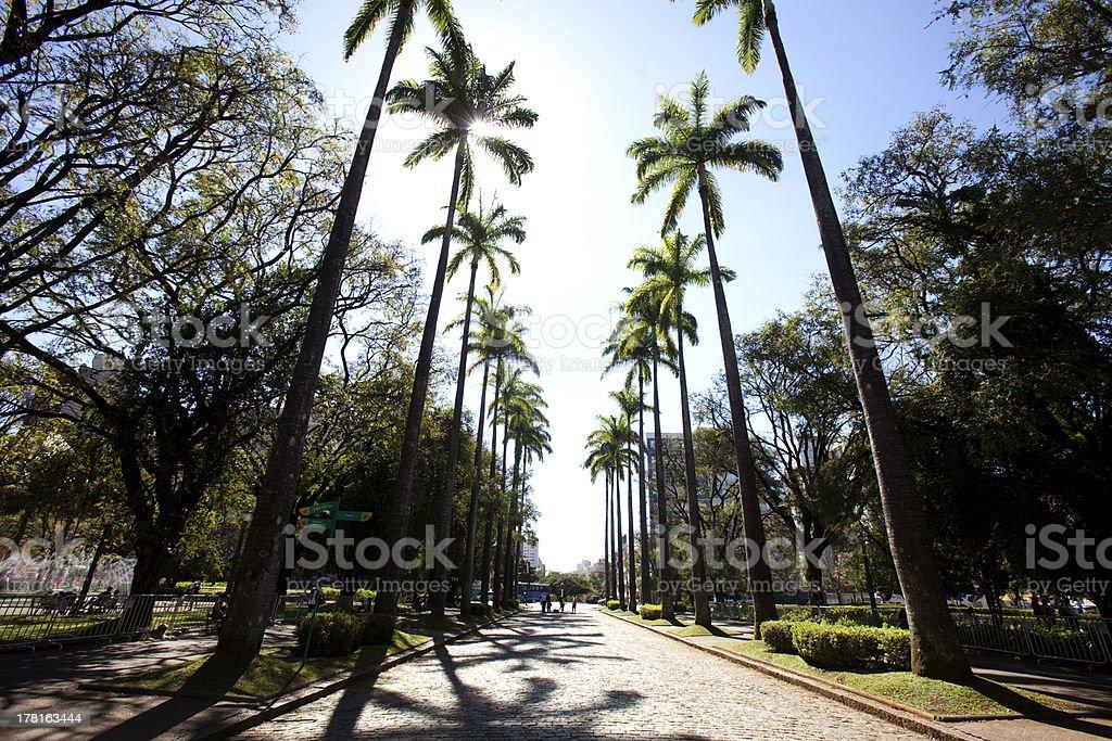 Praça da Liberdade, Belo Horizonte stock photo