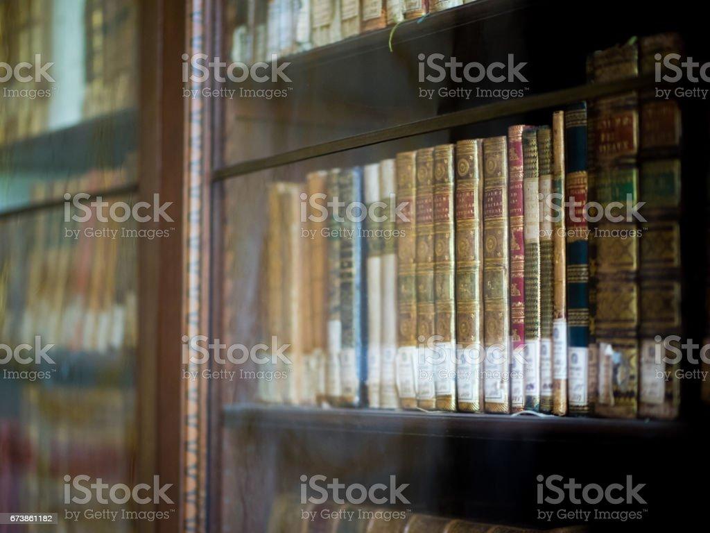 Kütüphane kitap rafı edebiyat royalty-free stock photo