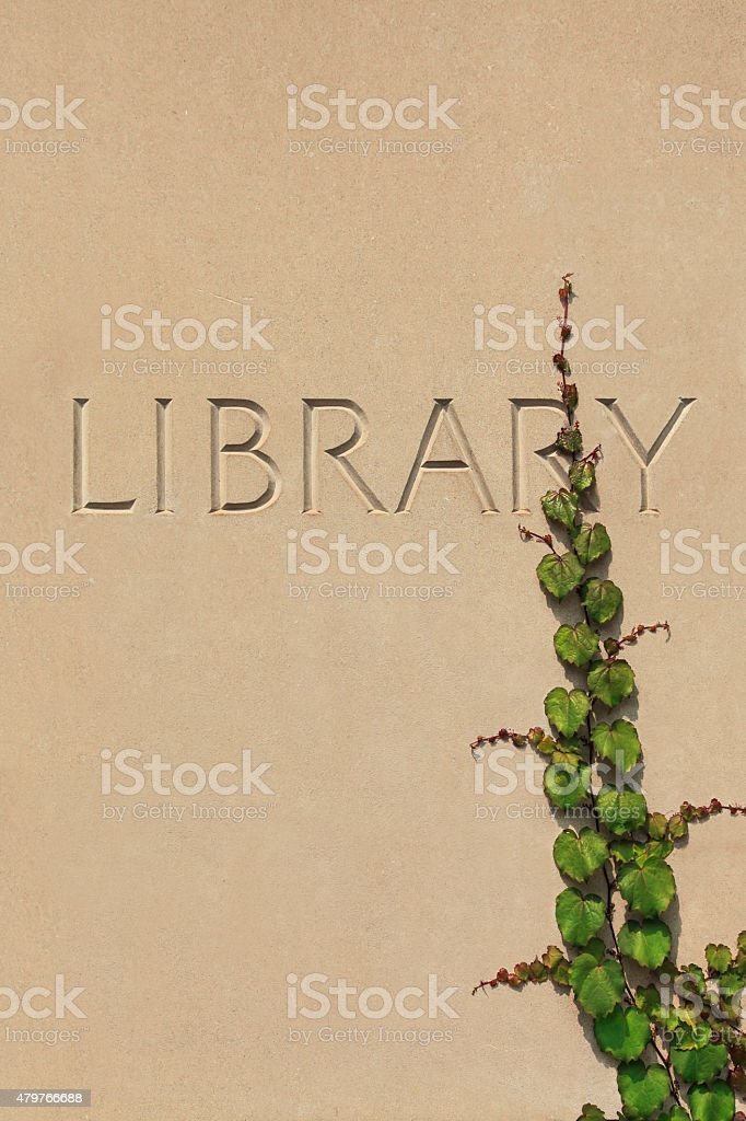 Library Wall with Ivy Vine stock photo