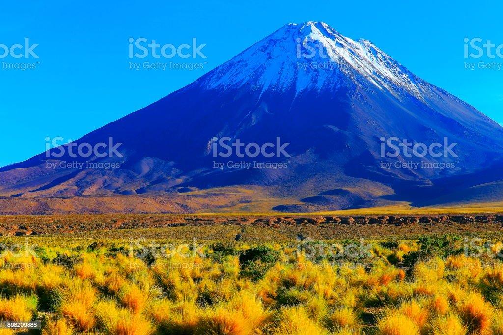 Licancabur snowcapped Volcano and Idyllic Atacama Desert altiplano steppe at gold colored sunrise, volcanic landscape panorama – San Pedro de Atacama, Chile, Bolívia and Argentina border stock photo