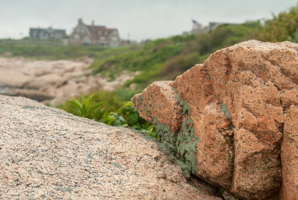 lichen on hazard rock - granite rock stock photos and pictures