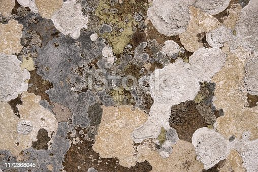 Stone with lichen natural background abstract