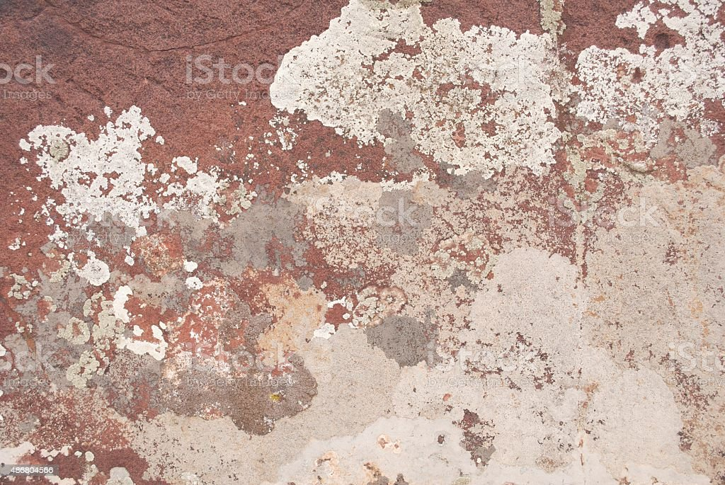 Lichens on Rock Face stock photo