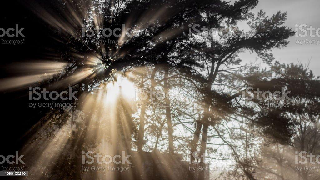 Licht Und Schatten – Foto