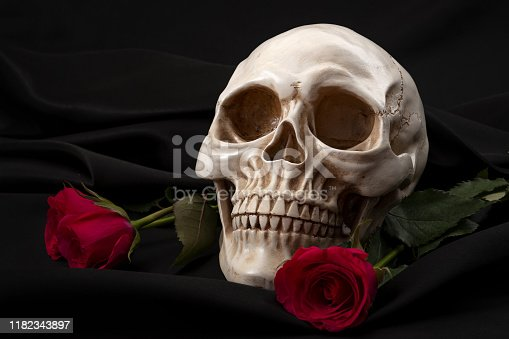 Life and death, darkness and enlightenment and the duality of good and evil conceptual idea with red rose and white skull isolated on black silk background