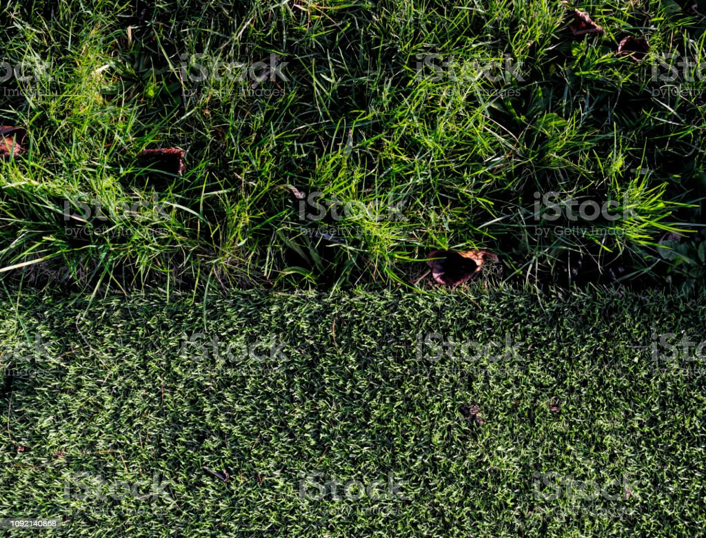 Life and death in a cemetery plastic grass stock photo