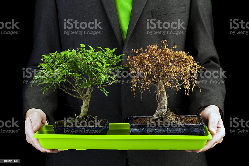 Life and death stock photo