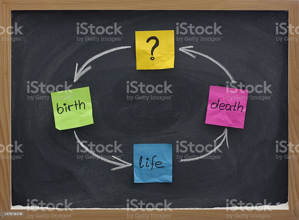 life cycle or reincarnation concept on blackboard royalty-free stock photo