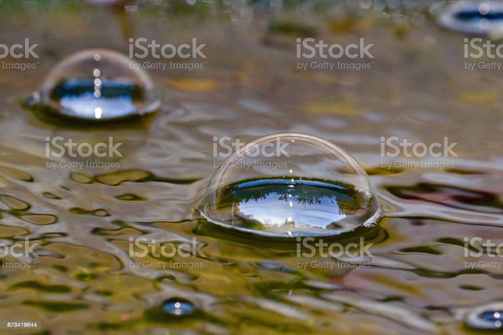 Life in a Bubble stock photo