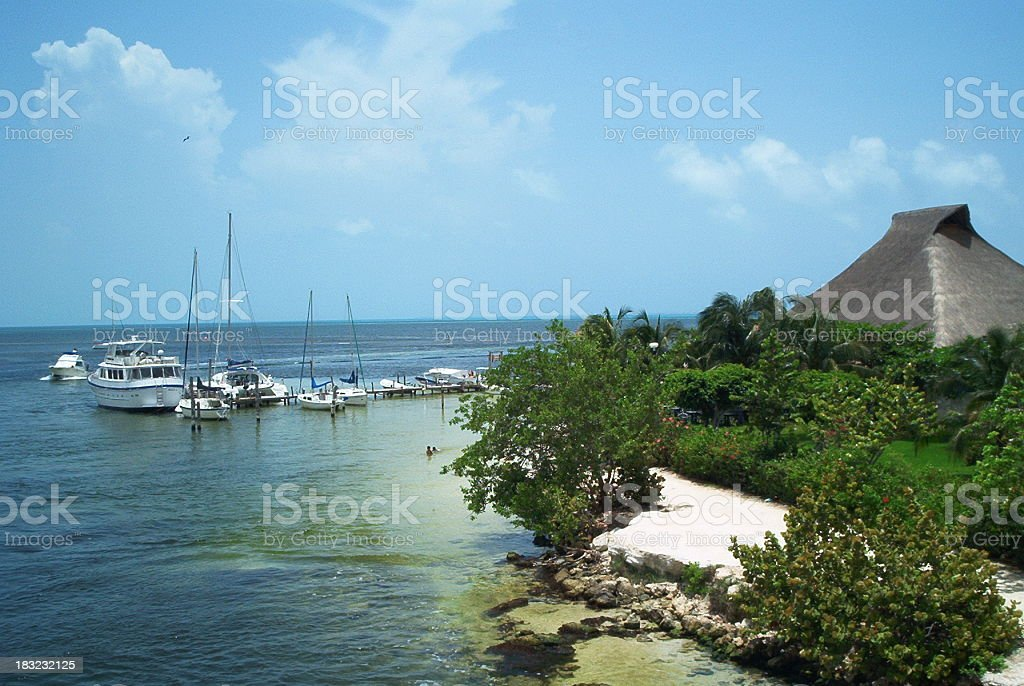 Life in Cancun royalty-free stock photo