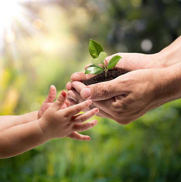 La vie à vos mains-jardin - Photo