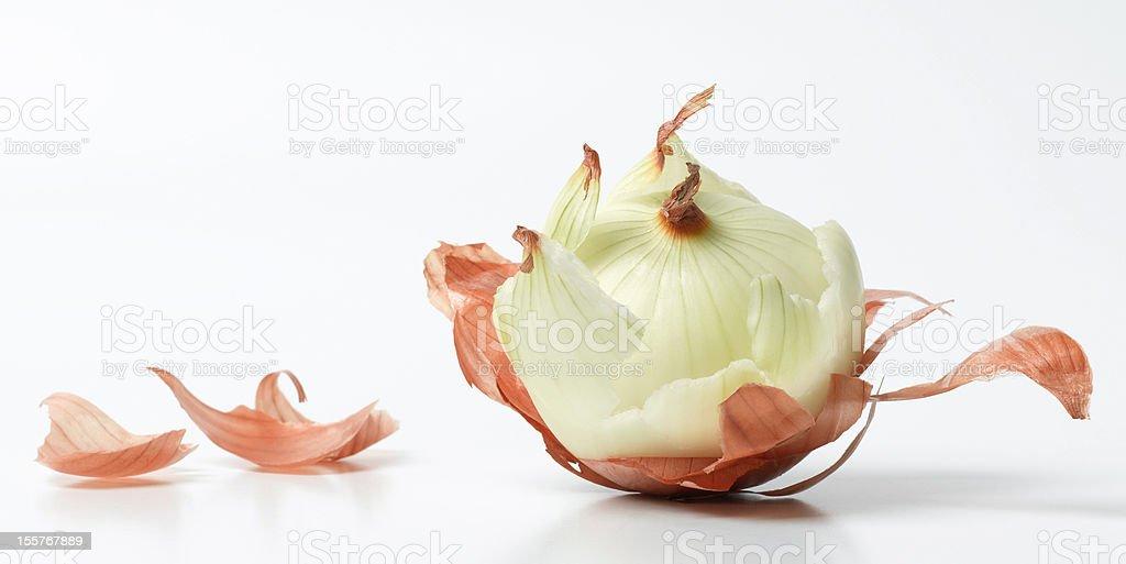 Life is like an onion - 免版稅健康的生活方式圖庫照片