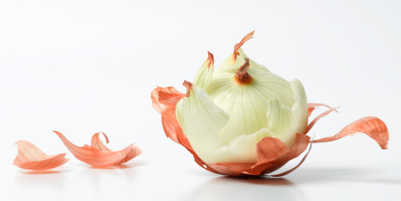 A peeled onion with a isolated white background with slight drop shadow.