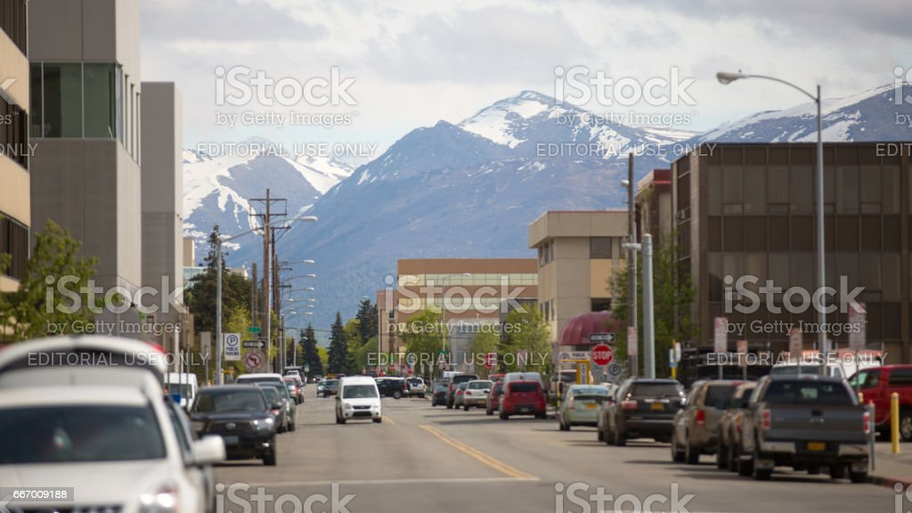 Life of alaska against the background of mountains stock photo