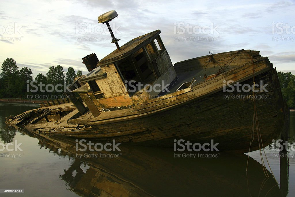 Life of the River royalty-free stock photo