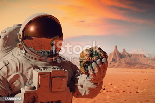 istock life on planet Mars, astronaut discovers living organisms inside a rock 1183889938