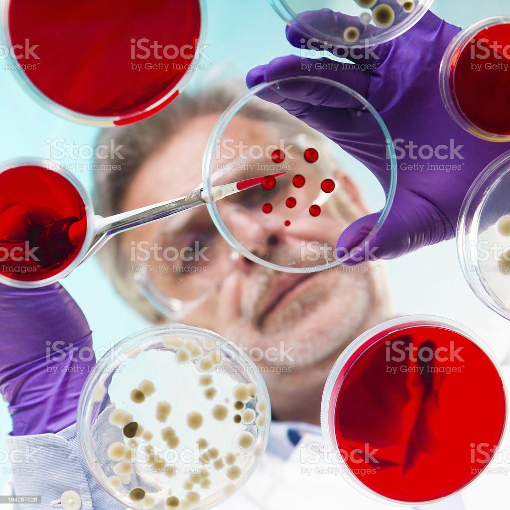 Life science royalty-free stock photo