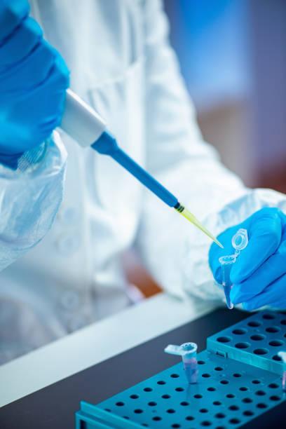 life science-forschung - dna test stock-fotos und bilder