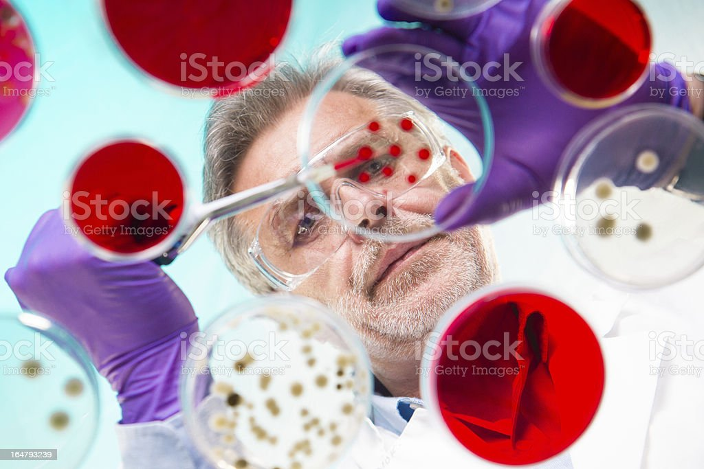 Life science research royalty-free stock photo