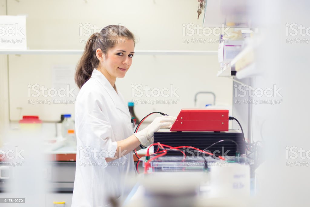 Life science researcher setting voltege on power supply to run electrophoresis. stock photo